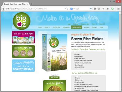 BigOz Website Design